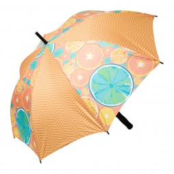 individueller Regenschirm Arnis