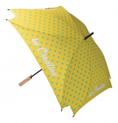 individueller Regenschirm Schrozberg