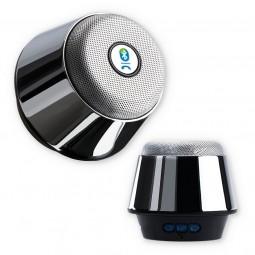 Chrome Bluetooth-Speaker mit SD-Kartenslot und Radio Wildemann